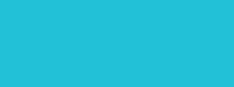 logo Surfie